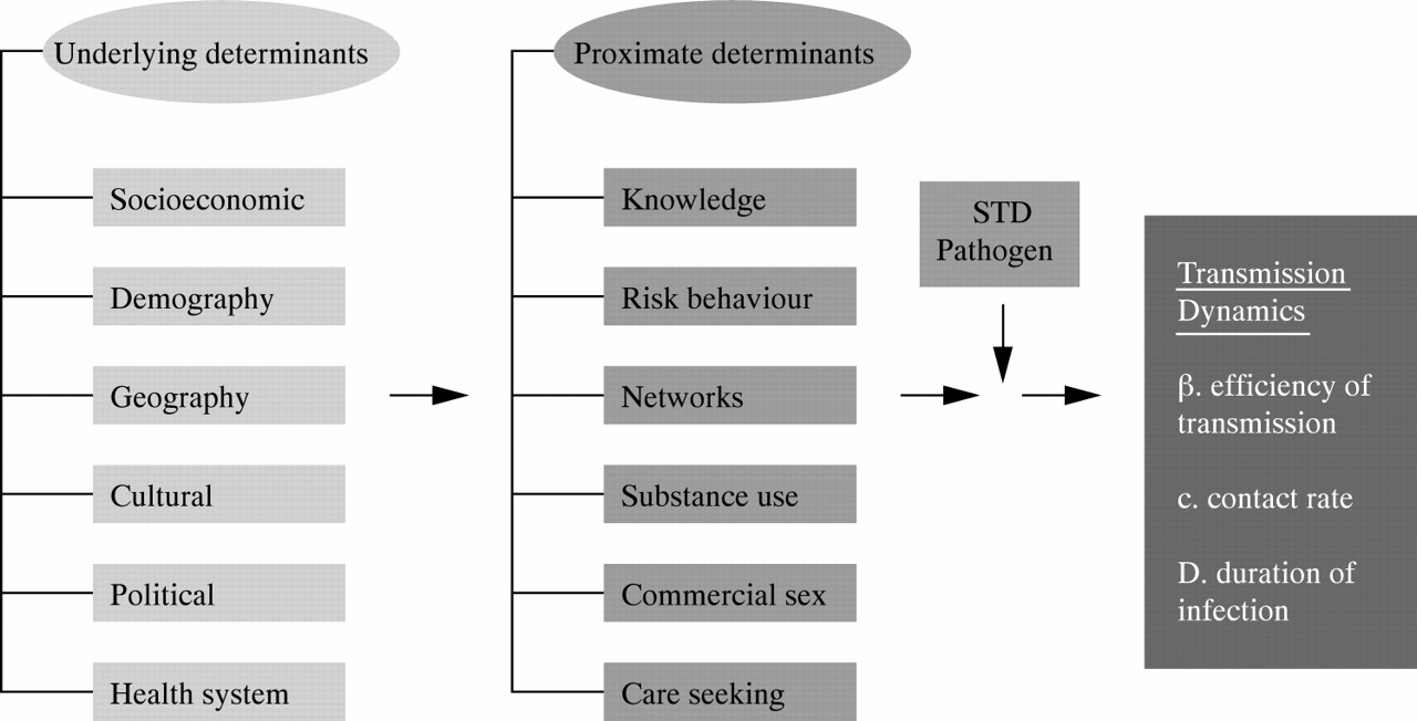 Determinants of STD epidemics: implications for phase appropriate ...