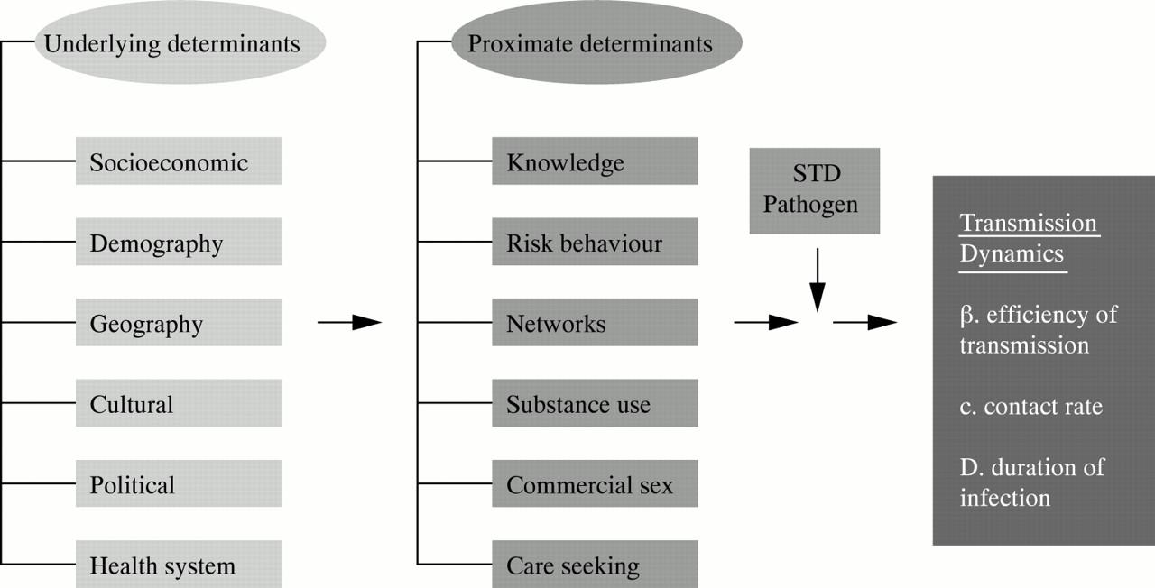 xenon research paper