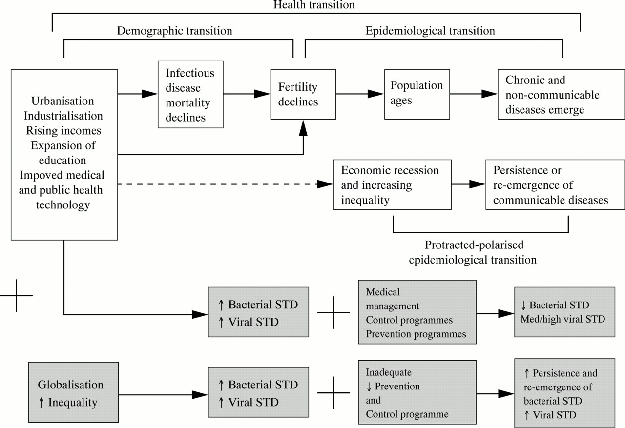 public health in transition Epidemiological transition accounts for the replacement of infectious diseases by chronic diseases over time due to expanded public health and sanitation this.